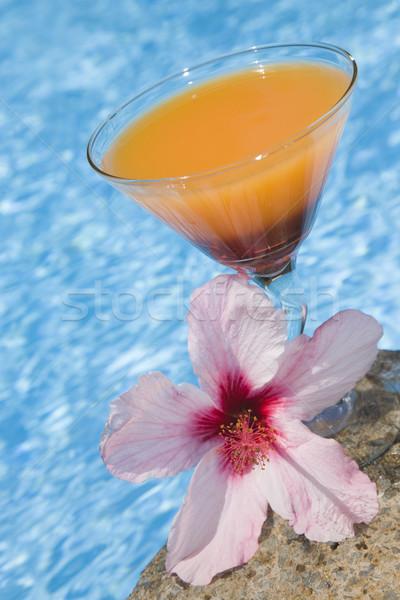 Coquetel colorido azul piscina vidro verão Foto stock © spanishalex