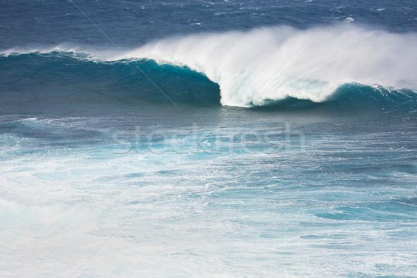 海の波 巨大な 波 いい 管 海 ストックフォト © spanishalex
