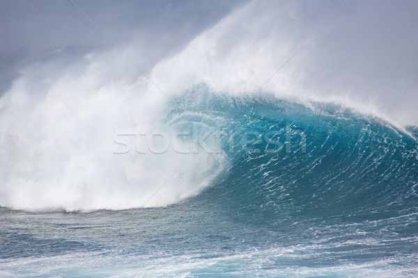 Ocean Wave Stock photo © spanishalex