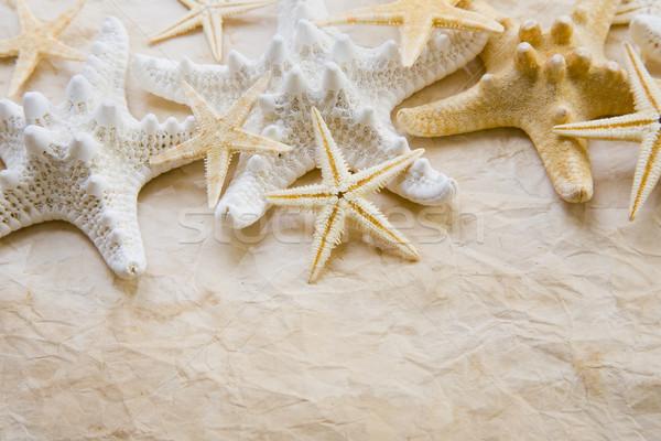Starfish manchado papel para cima papel velho natureza Foto stock © spanishalex