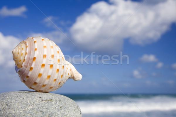 海岸 かなり 溶岩 劇的な ストックフォト © spanishalex