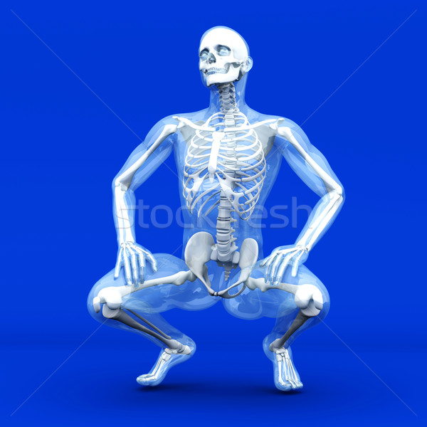Anatomy Visualization Stock photo © Spectral
