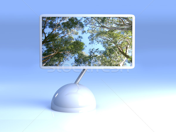 Design Screen - Eucalyptus Trees