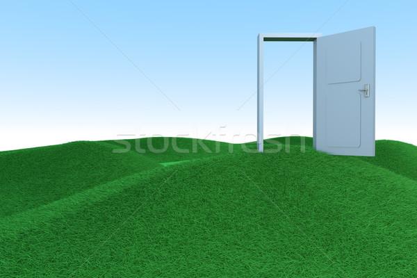 Deur vrijheid groene heuvels 3D gerenderd Stockfoto © Spectral