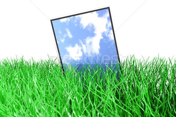 Grama 3D prestados ilustração isolado Foto stock © Spectral