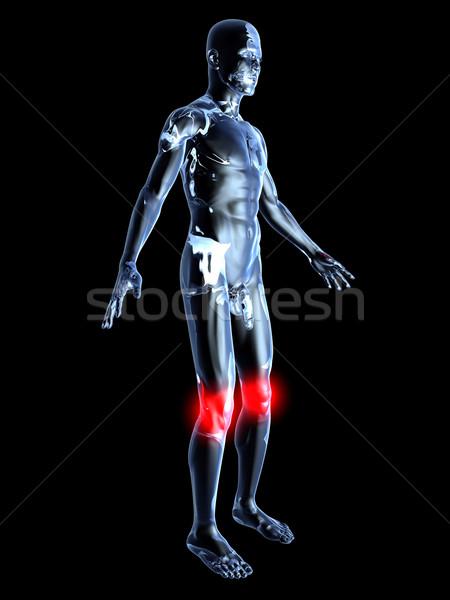 膝 解剖 医療 実例 3D ストックフォト © Spectral