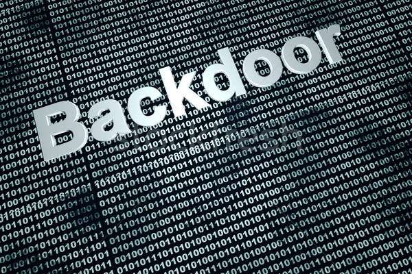 Backdoor Stock photo © Spectral