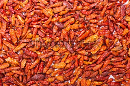 Dried Chili Stock photo © Spectral