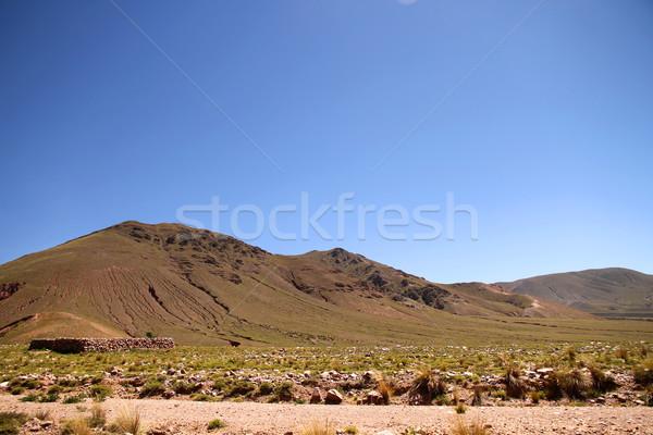 Landscape in Jujuy Stock photo © Spectral