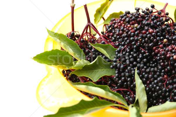 Stock photo: Elder Berries in a bowl