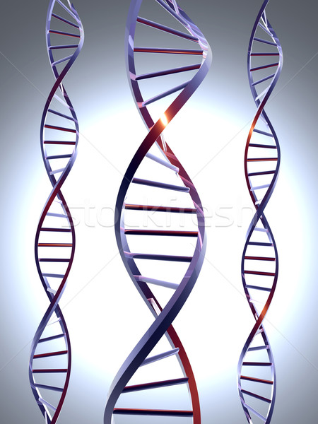 Metall dna 3D gerendert Double Helix Stock foto © Spectral