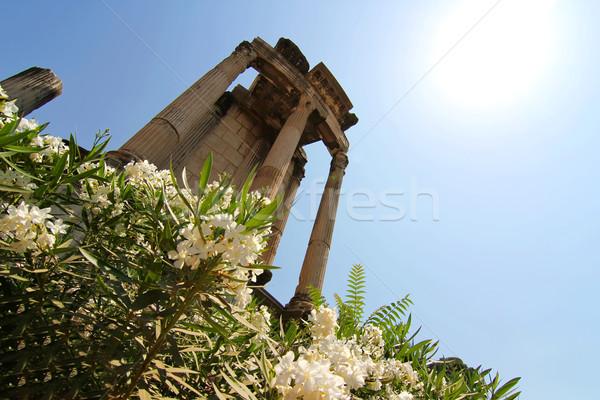 Temple of Vesta Stock photo © Spectral