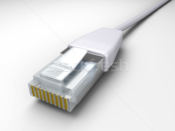 LAN Cable	 Stock photo © Spectral