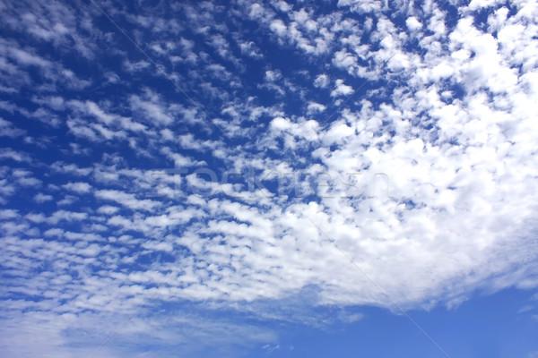 Blue Sky Stock photo © Spectral
