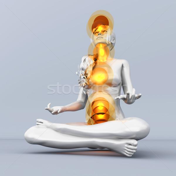 Stockfoto: Chakra · meditatie · vrouw · vol · 3D