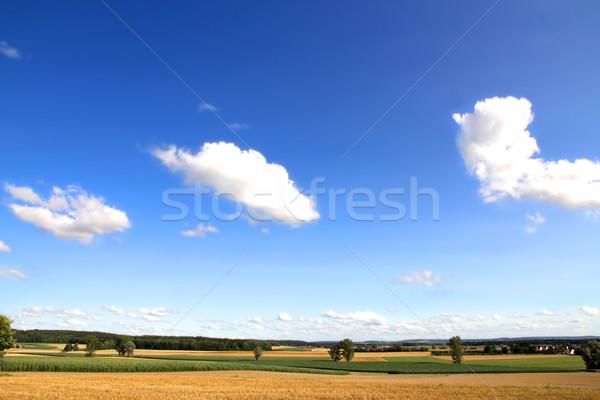 German Landscape under a blue Sky Stock photo © Spectral