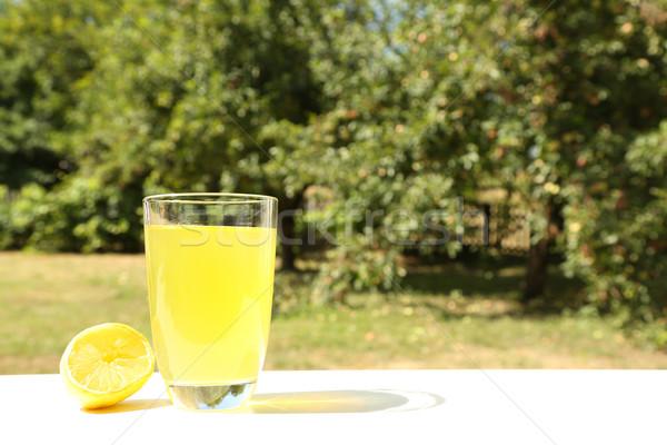 Természetes limonádé kert üveg étel természet Stock fotó © Spectral