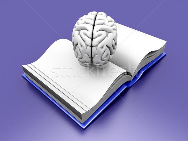 Foto d'archivio: Cervello · libro · psichiatrica · letteratura · 3D · reso