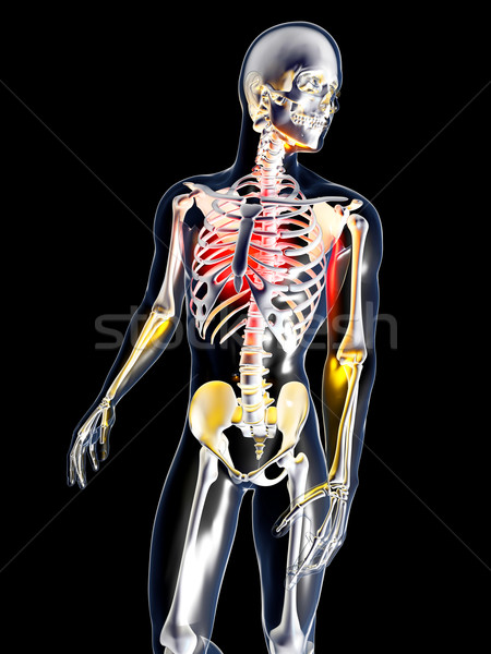 Anatomy - Chest Pain Stock photo © Spectral