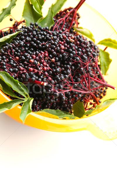 Elder Berries in a bowl Stock photo © Spectral