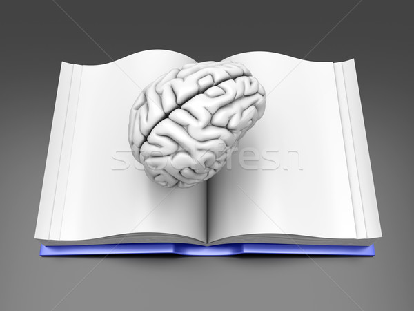Brain Book	 Stock photo © Spectral
