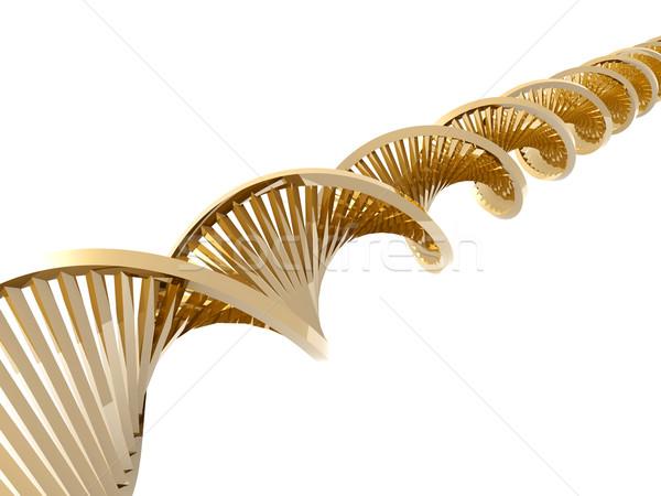 Golden DNA Stock photo © Spectral