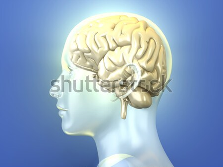 Brain Injection Stock photo © Spectral