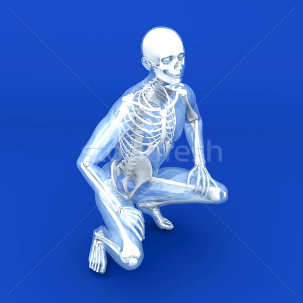 Anatomy Visualization Stock photo © Spectral