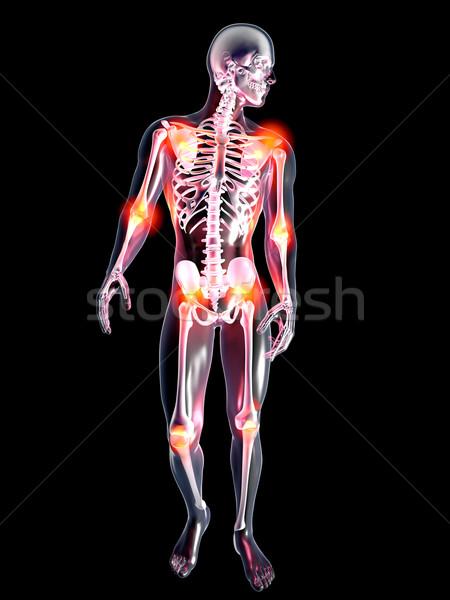 Foto stock: Anatomia · doloroso · articulações · 3D · prestados · ilustração