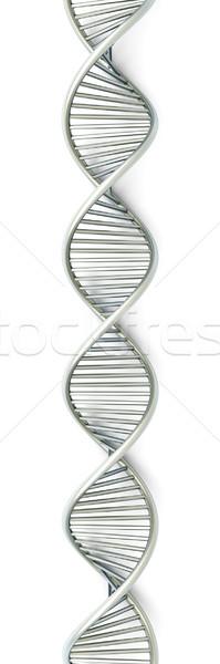 DNA symboliczny model 3D świadczonych ilustracja Zdjęcia stock © Spectral