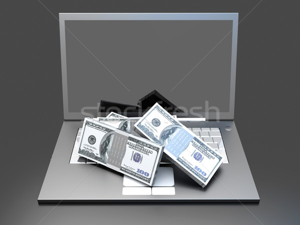 Money and Laptop Stock photo © Spectral