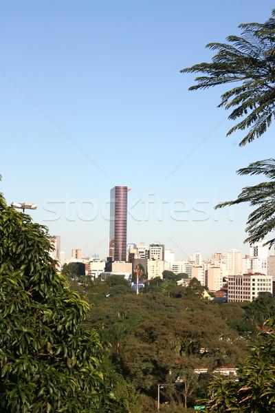 Ver São Paulo linha do horizonte Brasil cidade verde Foto stock © Spectral