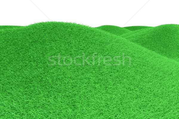 Green Hills Stock photo © Spectral