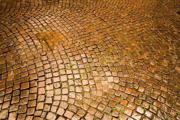 Cobblestone pavement in Verona Stock photo © Spectral