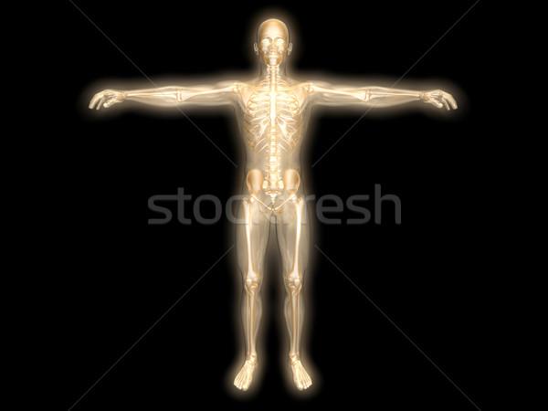 Energy body Stock photo © Spectral