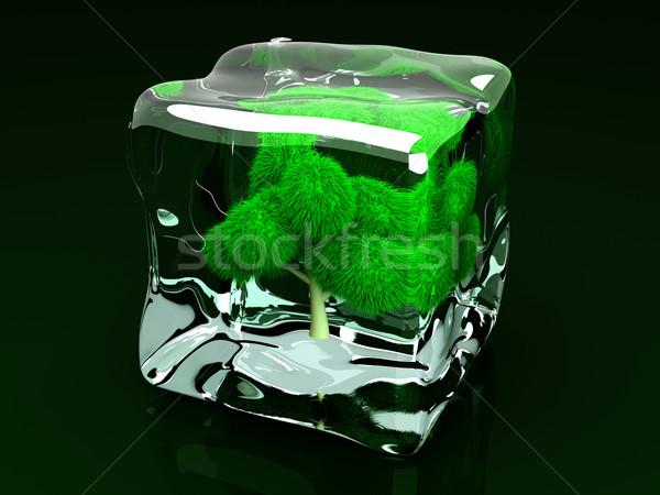 Frozen Tree Stock photo © Spectral