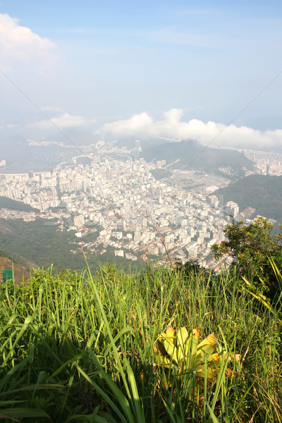 Görmek Rio de Janeiro panoramik Brezilya güney amerika plaj Stok fotoğraf © Spectral
