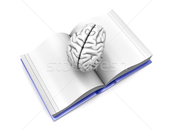 Cervello libro psichiatrica letteratura 3D reso Foto d'archivio © Spectral