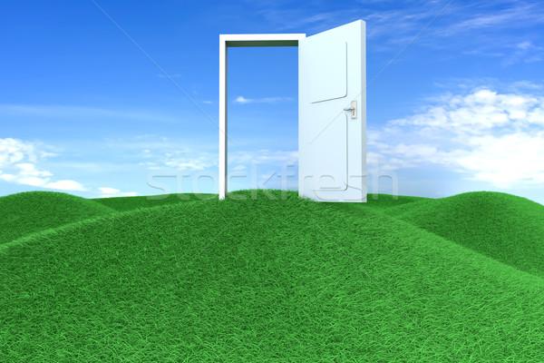 ドア 自由 緑 丘 3D レンダリング ストックフォト © Spectral