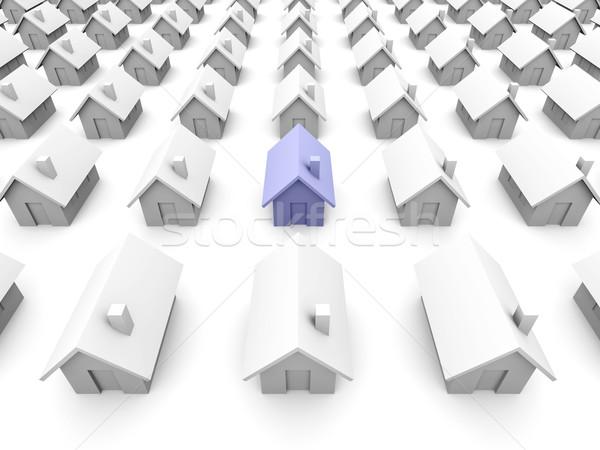 Zabawki domów jeden niebieski specjalny domu Zdjęcia stock © Spectral