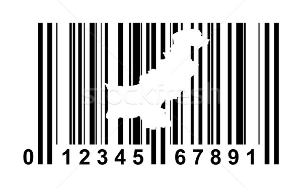 Pakistan bar code Stock photo © speedfighter