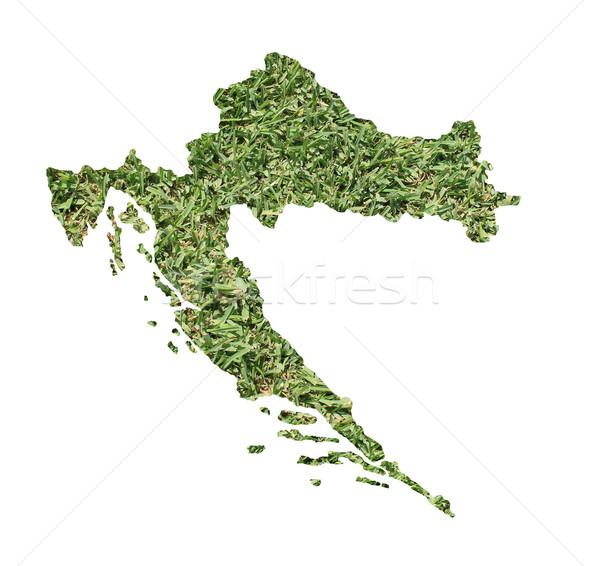 Croacia ambiental mapa hierba verde ecológico naturaleza Foto stock © speedfighter