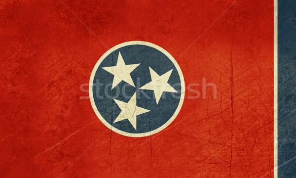 Grunge Tennessee banderą Ameryki odizolowany biały Zdjęcia stock © speedfighter