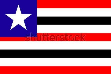 Banderą Brazylia podróży ikona Zdjęcia stock © speedfighter