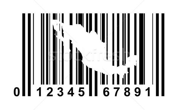 Mexico Bar code Stock photo © speedfighter