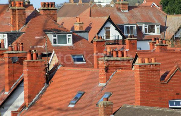Red tiled roofs of modern houses Stock photo © speedfighter