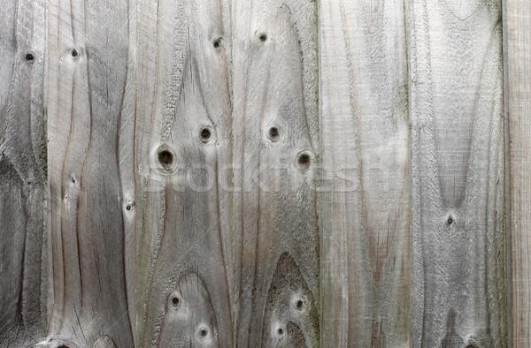 Textured wooden fence Stock photo © speedfighter