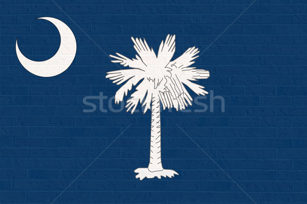 Carolina del Sud bandiera muro di mattoni america isolato bianco Foto d'archivio © speedfighter