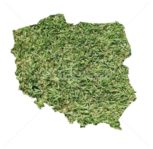 Pologne environnement carte herbe verte écologique nature Photo stock © speedfighter
