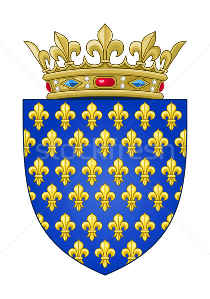 French heraldic coat of arms Stock photo © speedfighter